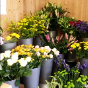 Lilies Florist (Cleethorpes)