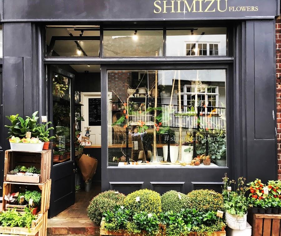 Shimizu Flowers