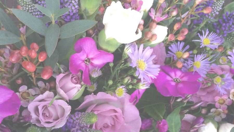 Sophie's Flowerpot