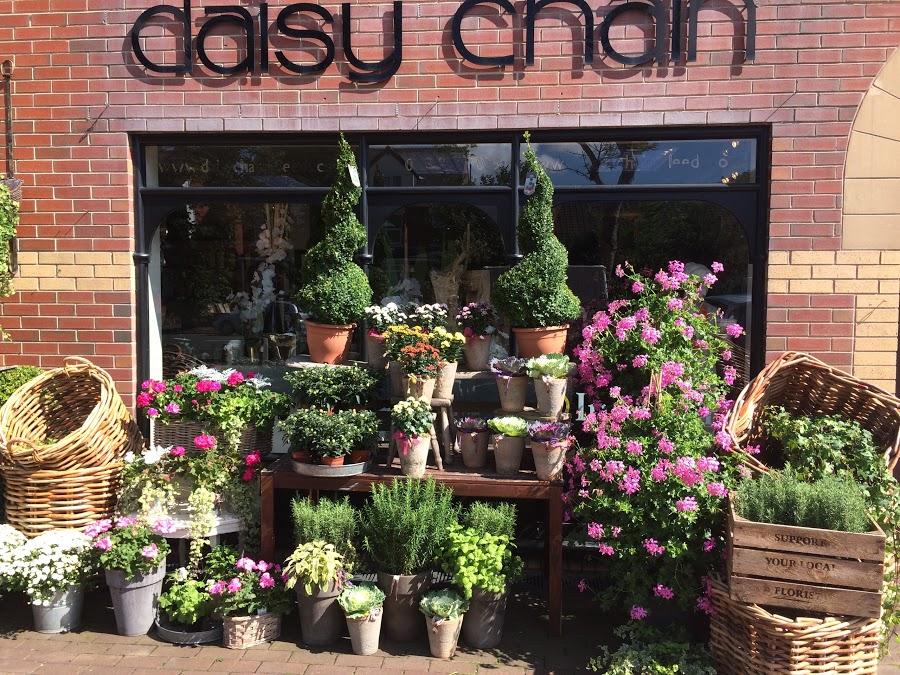 Daisy Chain Leeds