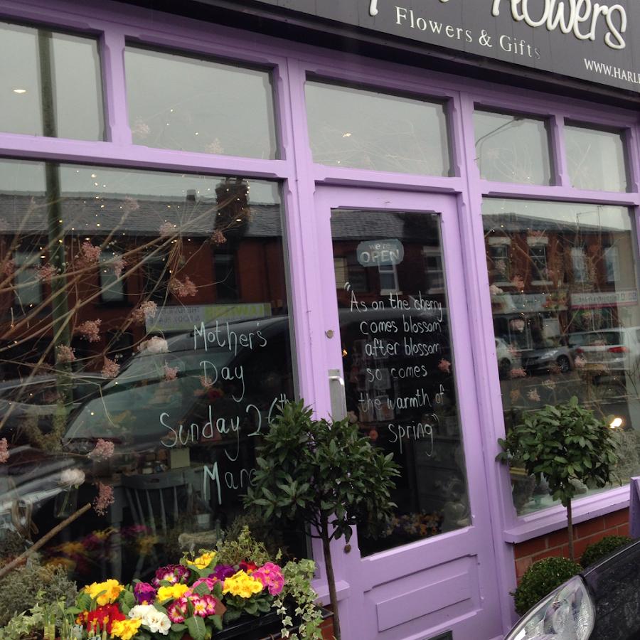 Harlequin Flowers Ltd