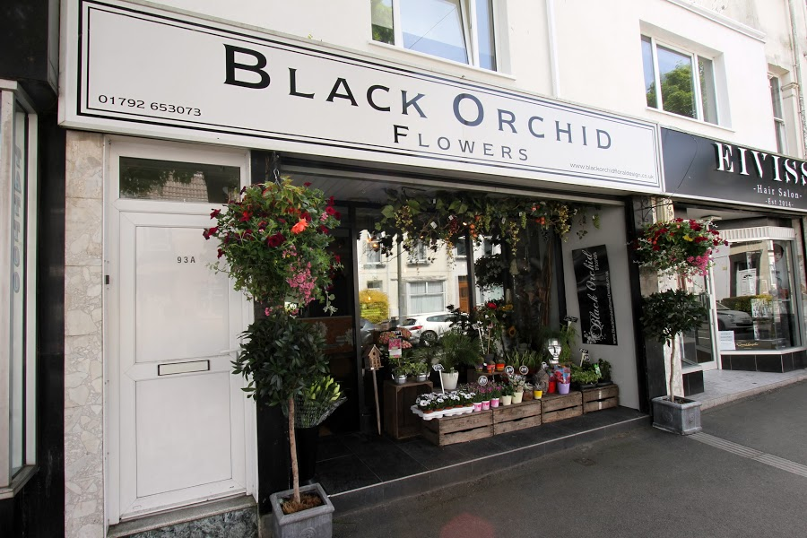 Black Orchid Floral Design