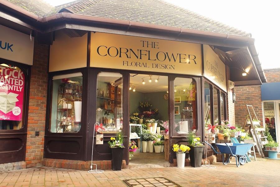 The Cornflower