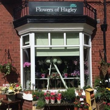 Flowers of Hagley
