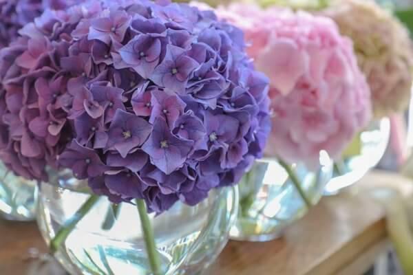 Kendall's Florist