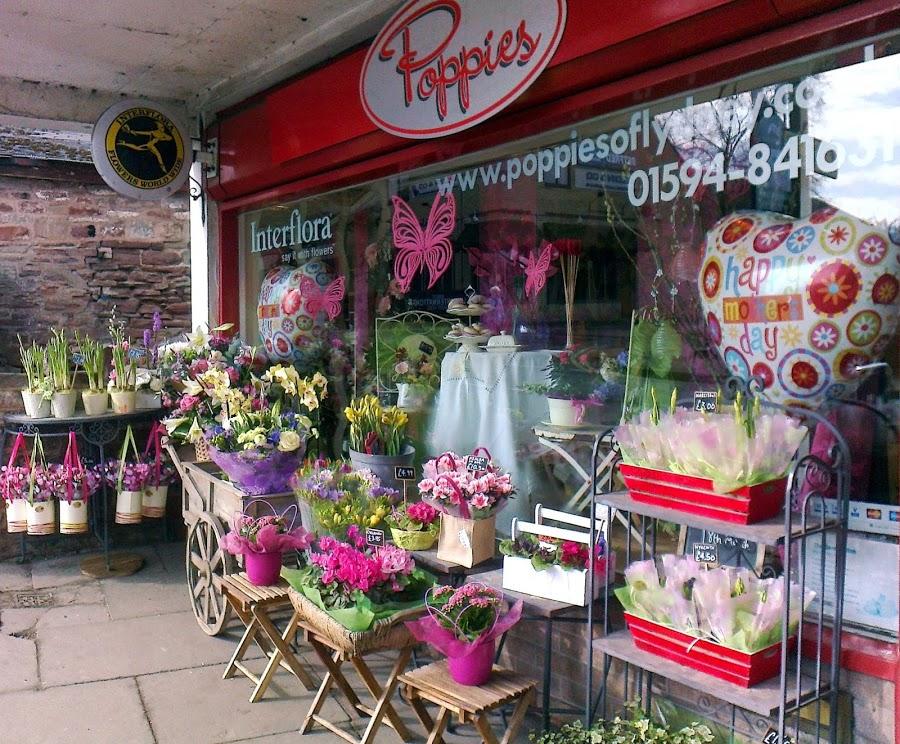 Poppies of Lydney