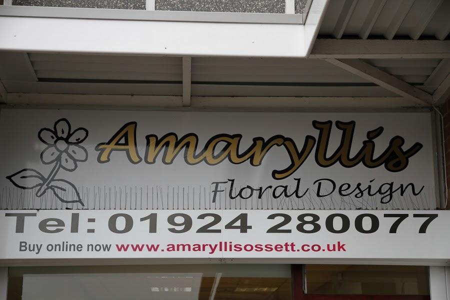 Amaryllis Floral Design