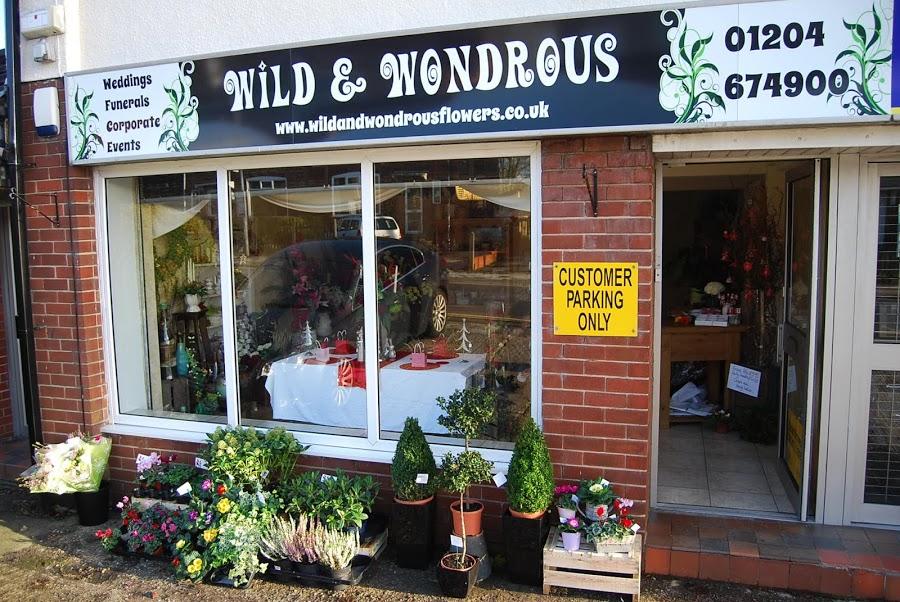 Wild and Wondrous