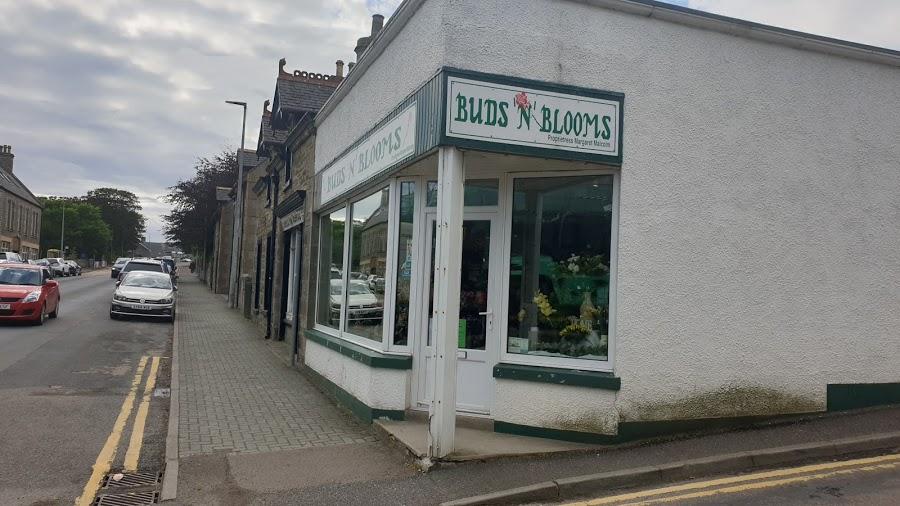 Buds 'n' Blooms