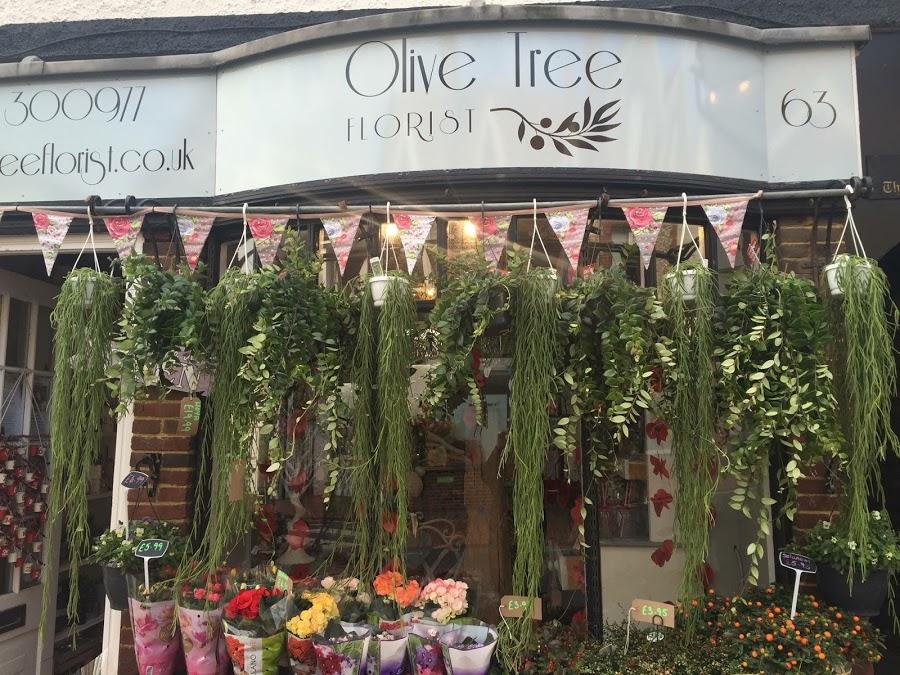 Olive Tree Florist